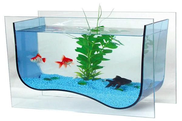 Как изготовить аквариум своими руками фото 497